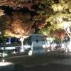 鳥取旅行、夜の宴♪