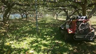 さぁー、今日から来年の秋の収穫に向かってスタートです
