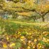 梨山の紅葉